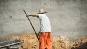 B_Forced labor Muslim Minorities China