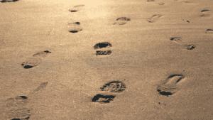 b_webinar product footprint