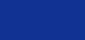 The_Climate_Choice_LOGO_Blue (1)